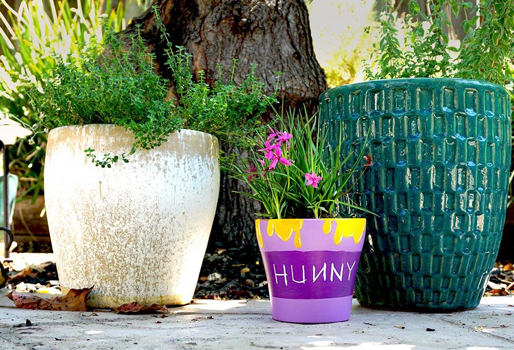 Winnie the pooh terracotta pot plant