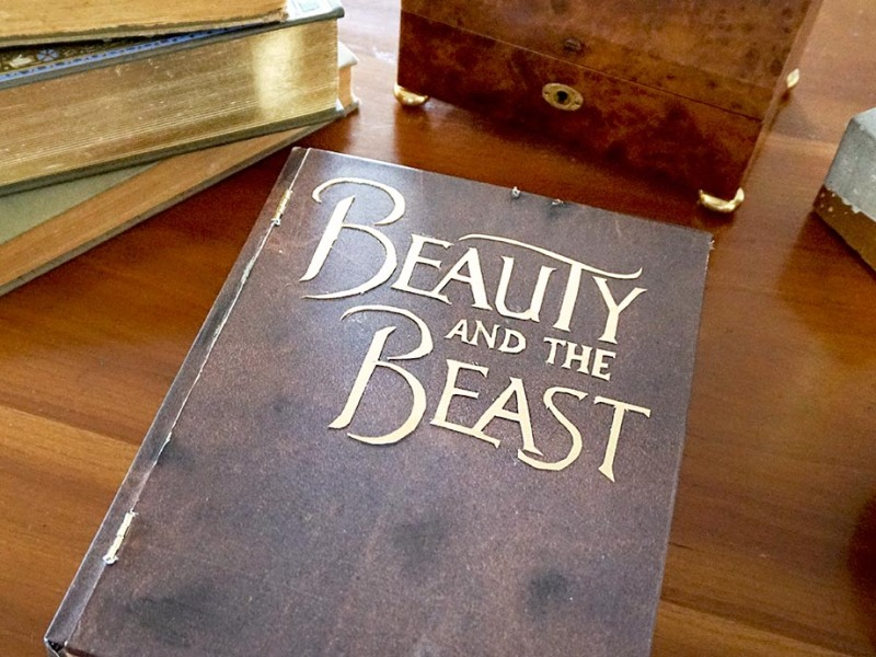 Disney Beauty and the Beast Inspired hidden treasure book box